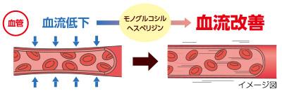 血流(末梢血流)を改善する